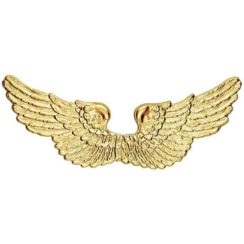 Golden angel wings